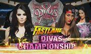 Nikki Bella vs. Paige WWE Divas Championship Match