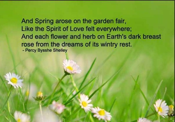 Vernal spring equinox quotes wishes images pictures status sayings 2018 spring equinox wishes pictures mightylinksfo