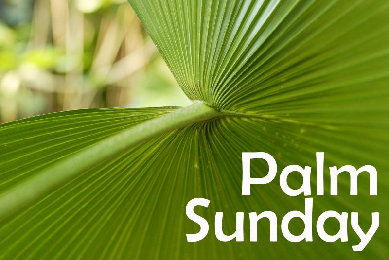 Palm Sunday 2016 Image...