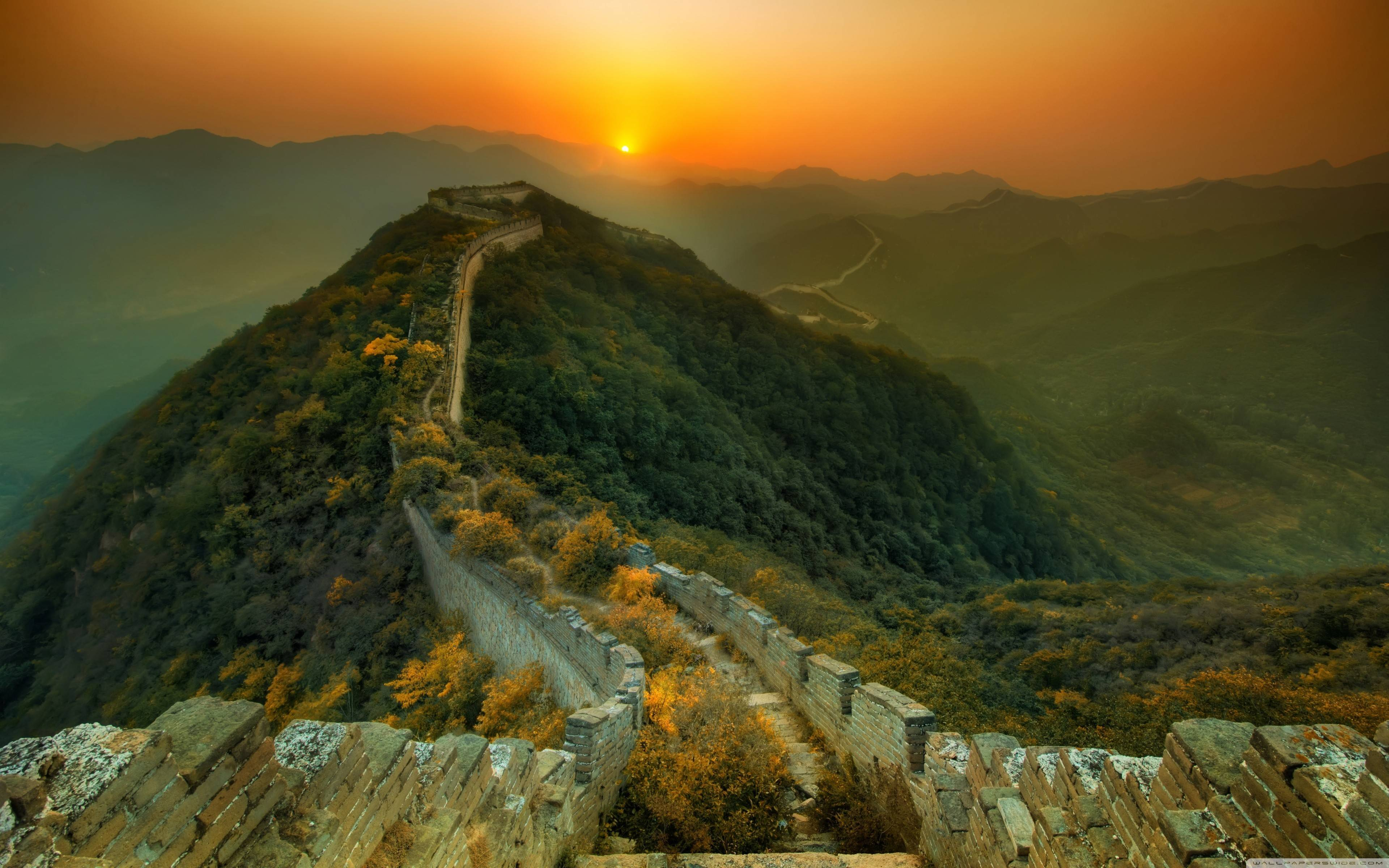 Overgrown section of the Great Wall – China