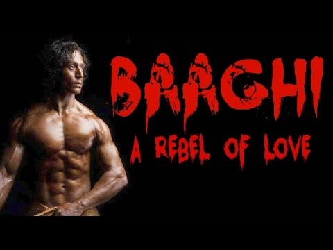 Tiger Shroff Upcoming Movie Bhaaghi Releasing In 2016