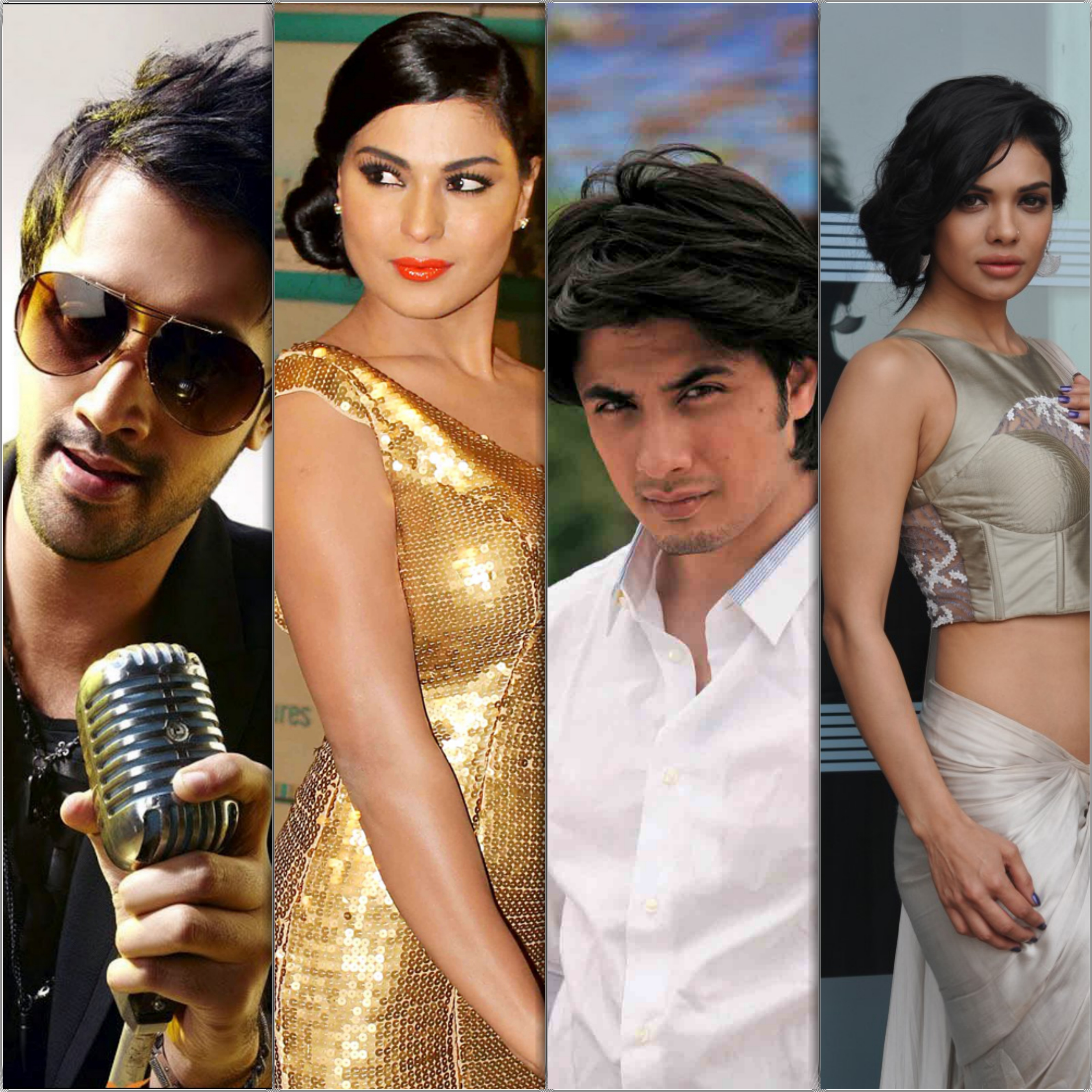 Top 10 Most Famous Pakistani Actors in Bollywood