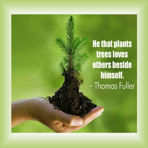 Protect Nature Quotes: Happy World Environment Day 2018 Wishes Quotes Sayings