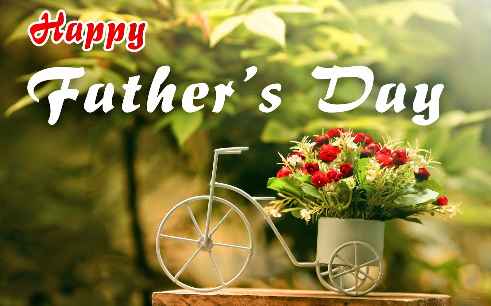 Happy Fathers Day Images Photos Whatsapp Status FB DP Pics Wallpapers 2015