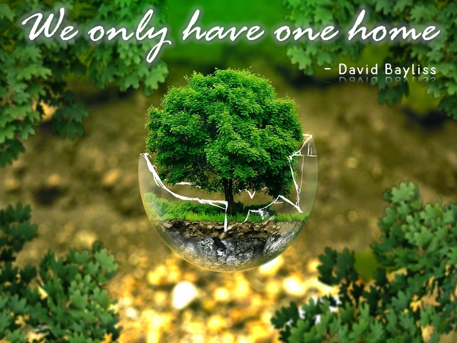 World Environment Day Sayings Photos