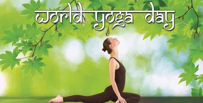 World Yoga Day 2015 Photos
