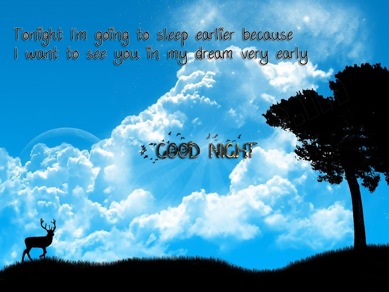 Good Night Quotes Photos