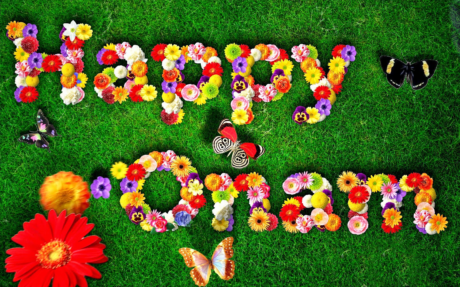 wishes images photos happy onam whatsapp fb dp 2015