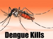 Killer! Dengue Fever, Symptoms, Home Remedies, Tips To Prevent From Dengue?