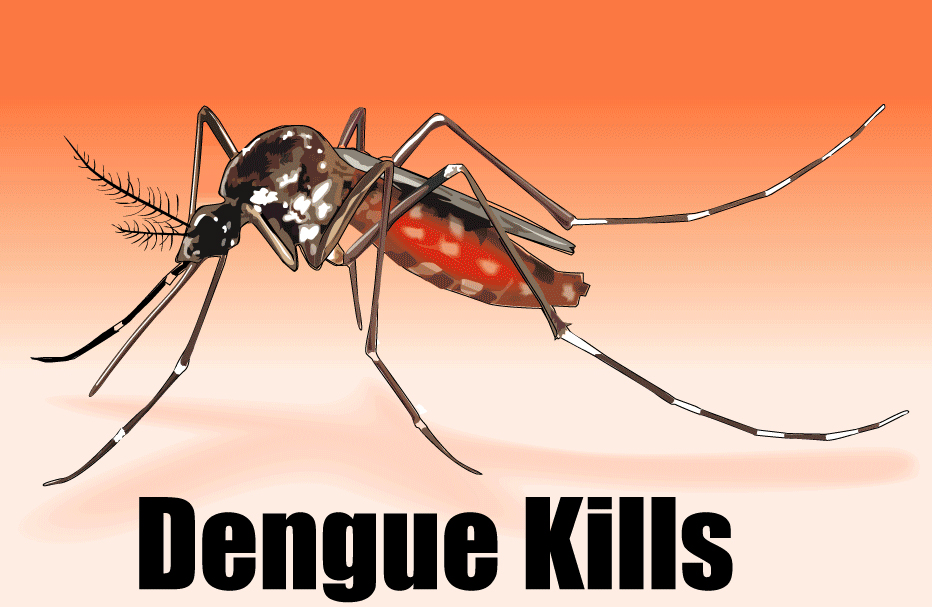 dengue fever and environmental factors Remote sensing article niche modeling of dengue fever using remotely  sensed environmental factors and boosted regression trees.