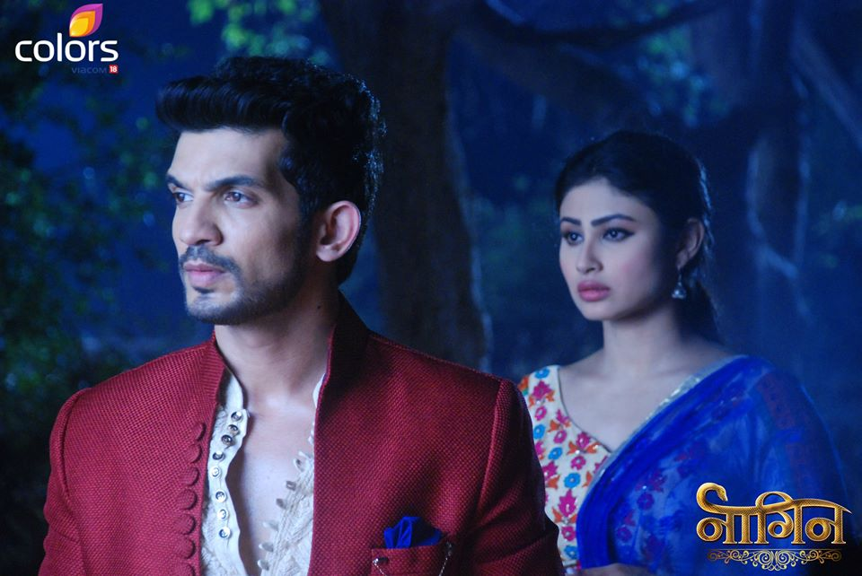 Nagin 27th December 2015 Episode Shesha & Shivanaaya Captures By Gurumaa