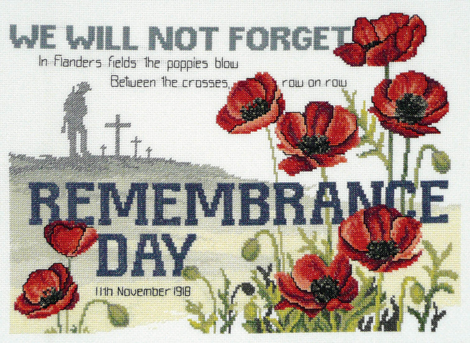 Remembrance Day Pictures 2015