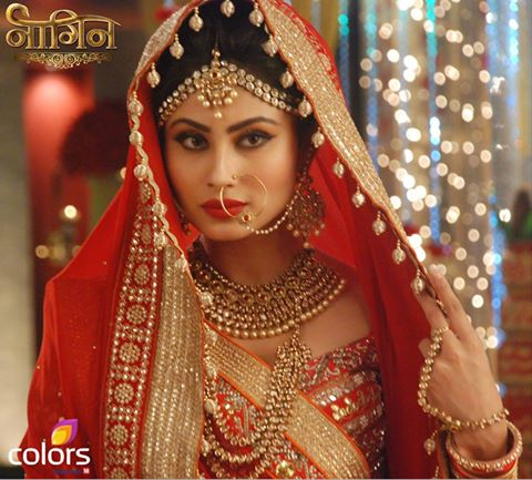 Ritwik To Know Truth Of Shivanaya Nagin 13th December 2015 Episode Written Updates