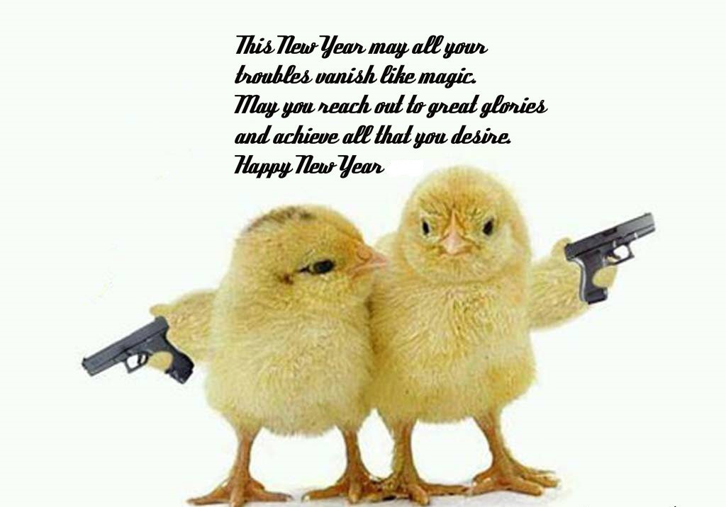 2016 new year funny wish