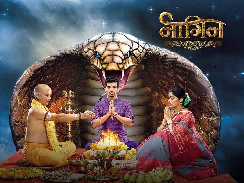 Shesha gives Poison to Sailesh !! Naagin 17th January 2016 Episode Written Updates
