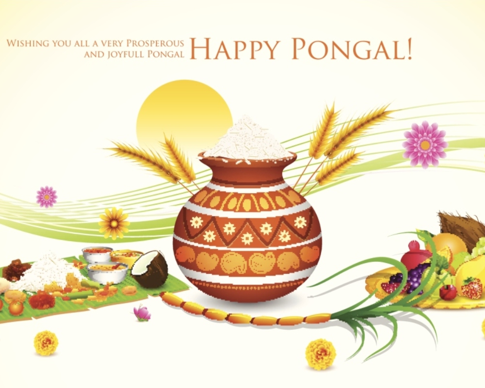 Happy Thai Pongal 2019 Quotes Wishes Messages Hd Videos Whatsapp