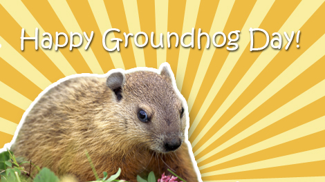 120512_Groundhog2E_Card