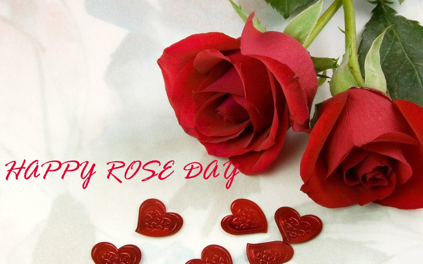 Rose-day-whatsapp-status