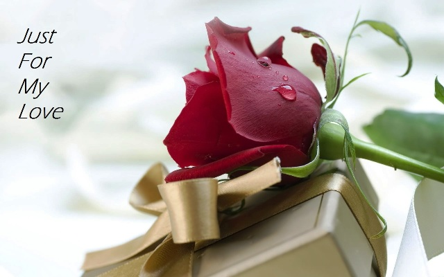 rose-day-2016-messages-for-boyfriend