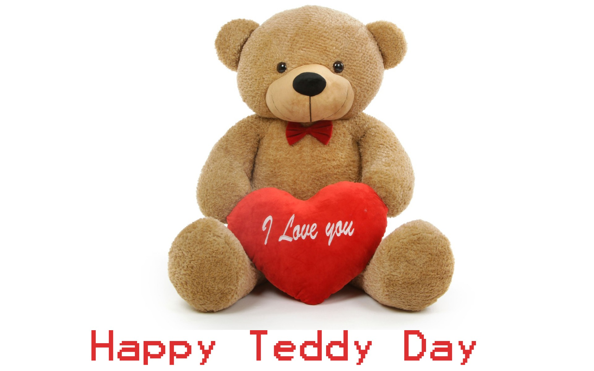 teddy Day pics