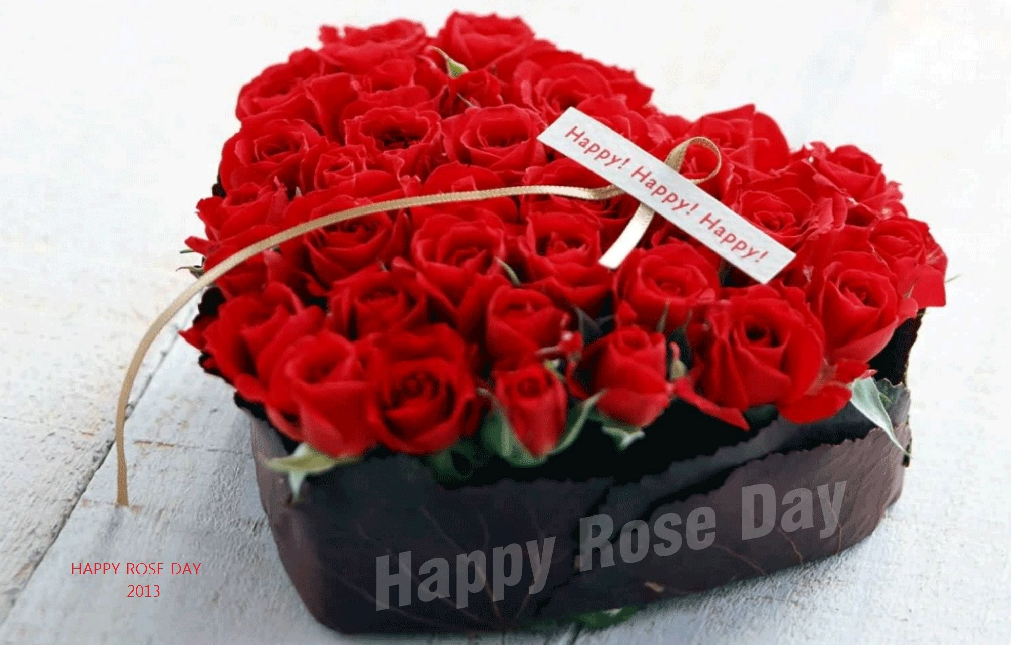 Image result for rose day date 2019