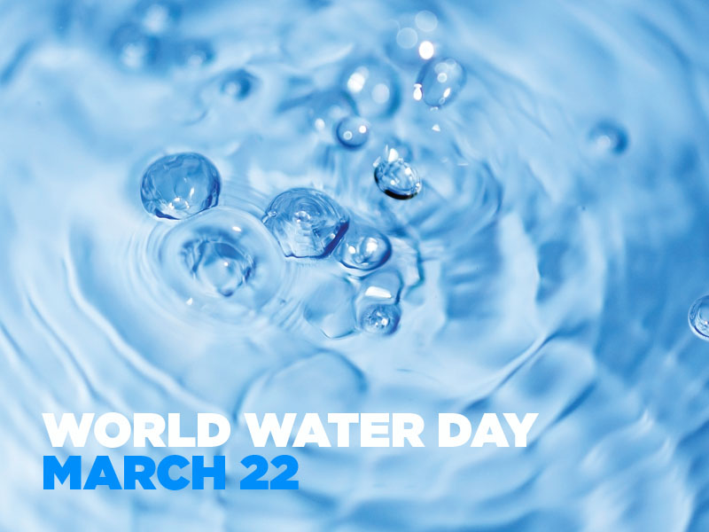 World Water Day 2018 Before Celebrating Holi You All Know The