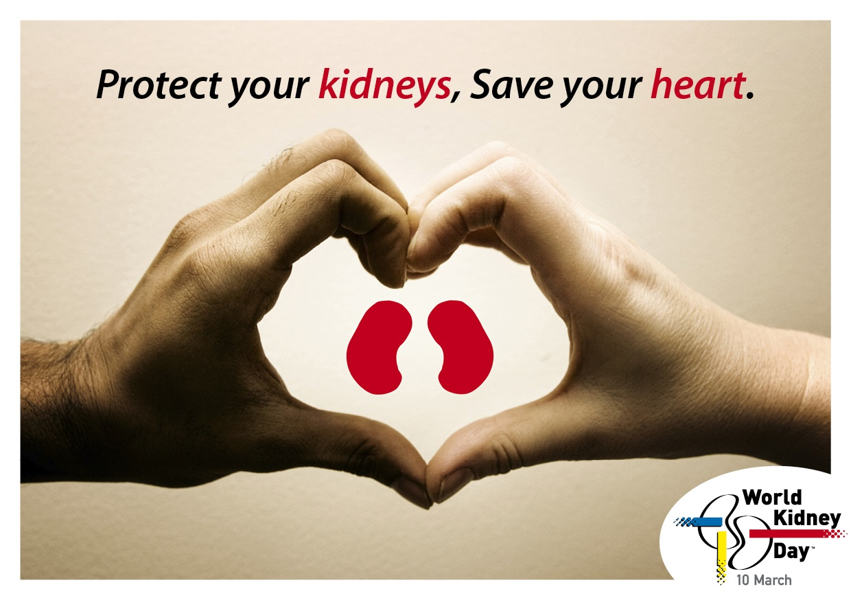 handheartkidneygraphic_withlogo
