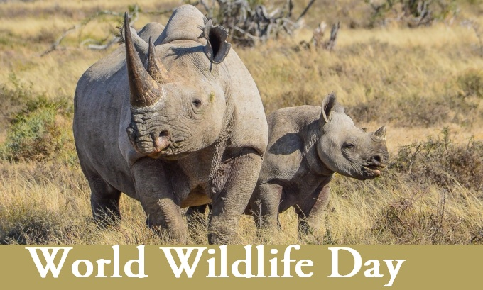 religious_happy_world_wildlife_day_pictures_8108596275
