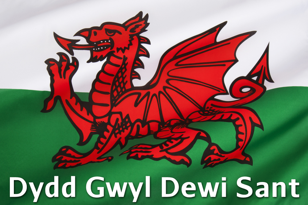 happy st david's day' in welsh - photo #34