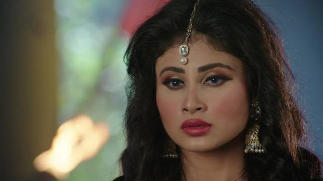 Naagin Written Episode Update