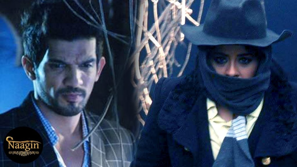 Yamini stabs Ritik! Naagin 30th April 2016 Episode Written Update