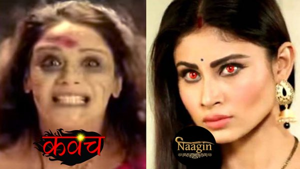 Colors Tv Serial Naagin to be replaced soon by Kavach