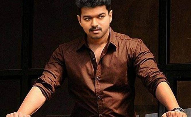Theri Box Office CollectionTheri Box Office Collection