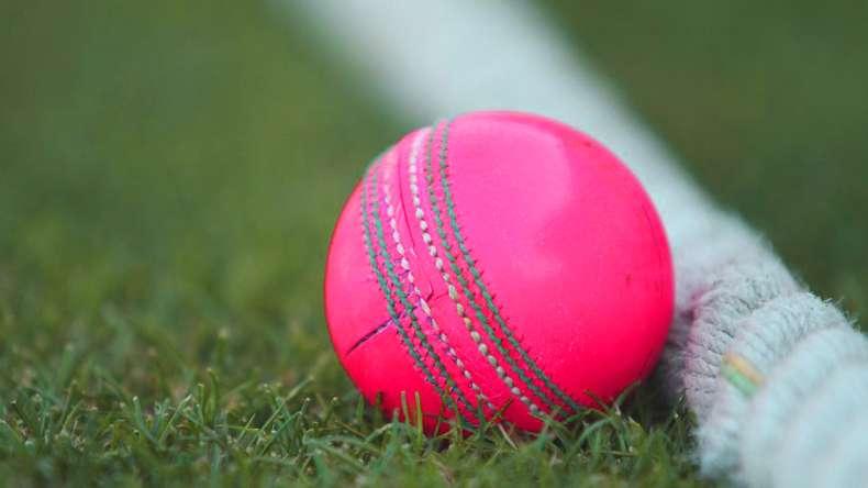 Day-night test-pink ball
