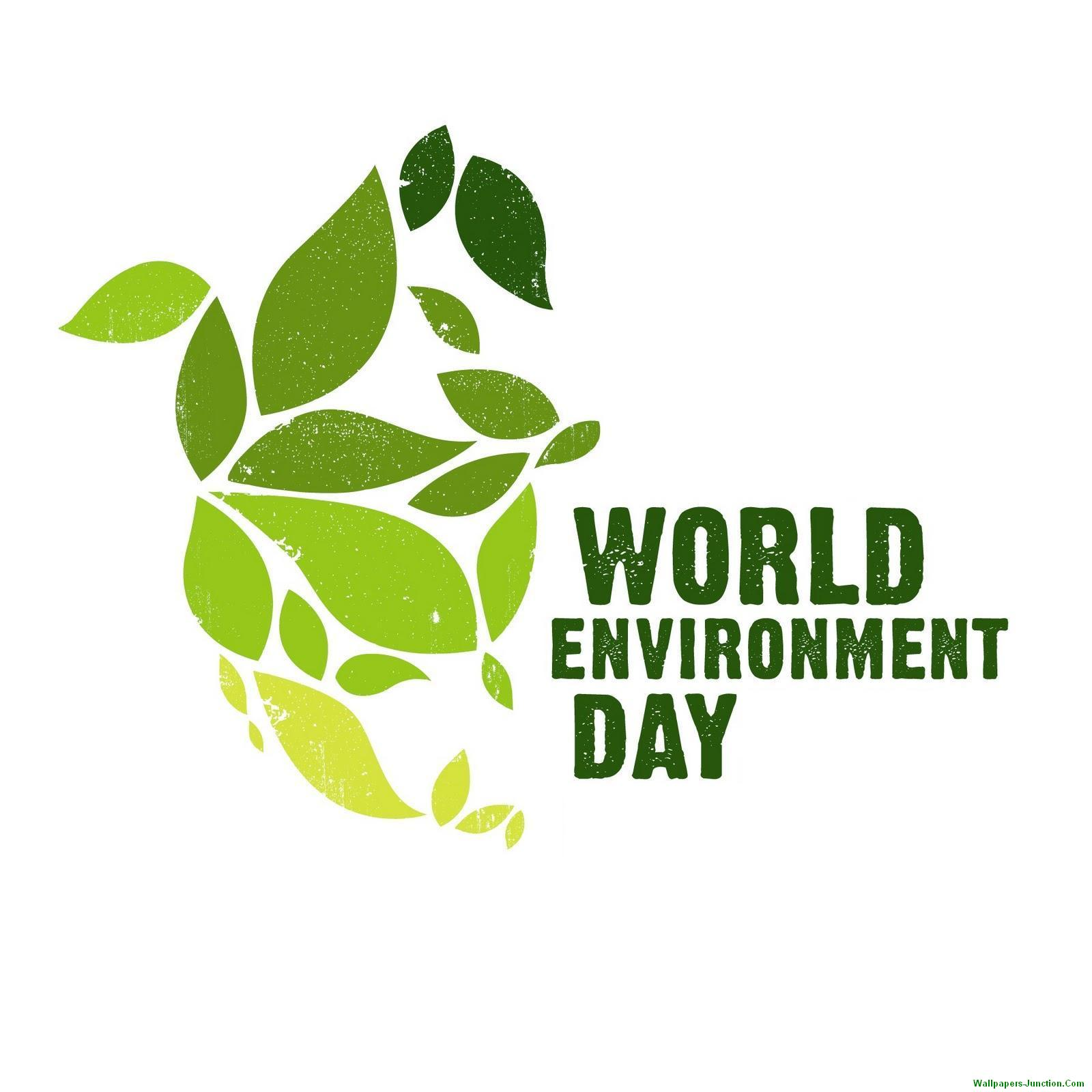 Protect Nature Quotes: Happy 2018 World Environment Day Slogans Wishes Quotes