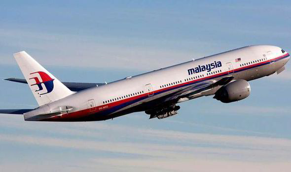 'MH370 fell out of sky after engine failure'