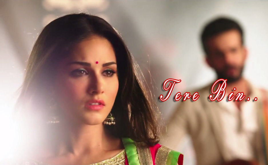 Party Night! Tere Bin Episode Written Updates