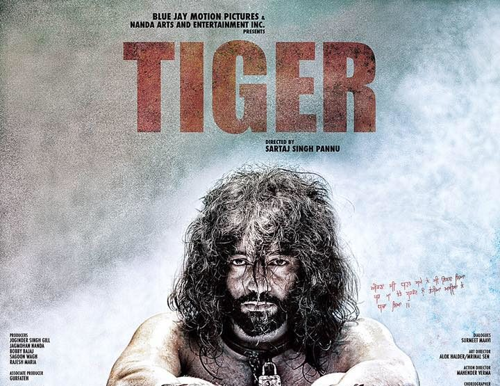 Tiger Movie Review & Rating