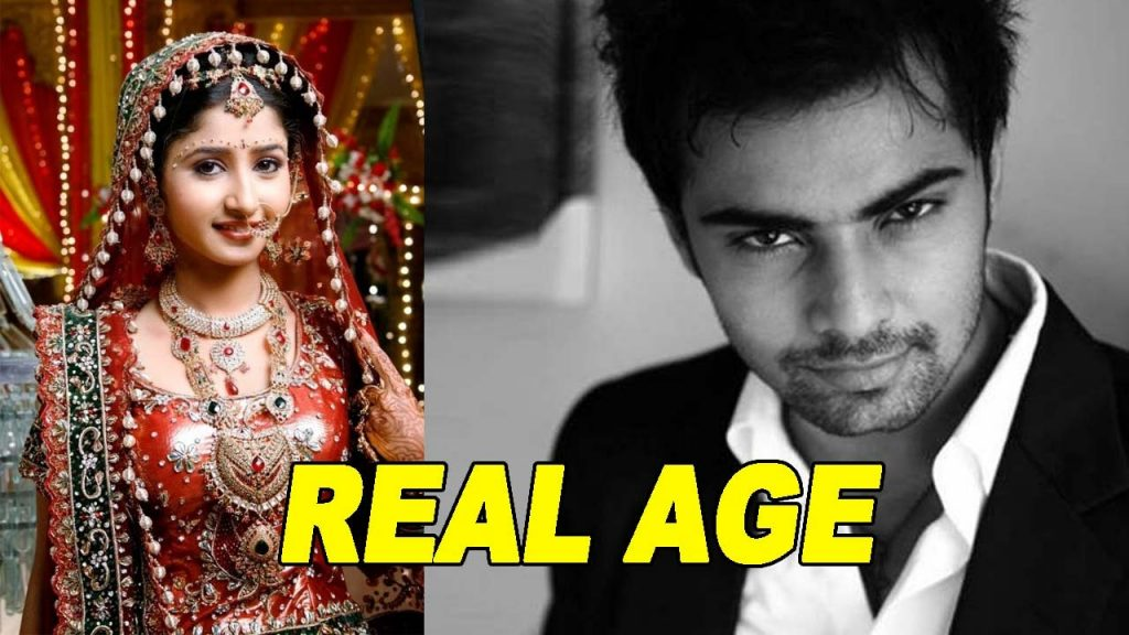 krishnadasi-written-episode-updates1