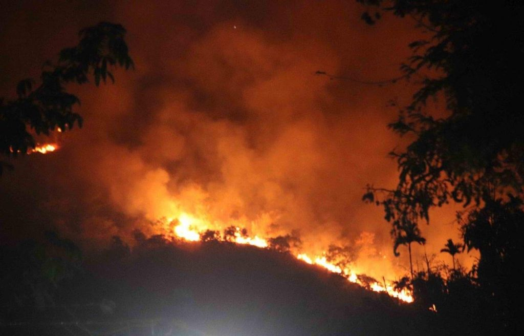Tamil Nadu Forest Fire Rescue Operation is On