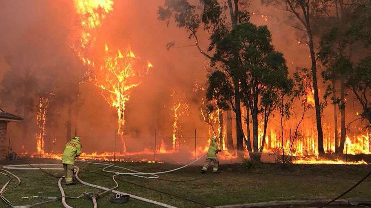 Sydney on fire, Hundreds of firefighters are trying to control