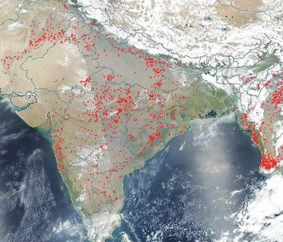 NASA Images: Large parts of India dotted with fires, Due to Heat?