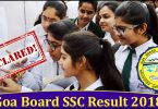 GSEB result 2018: Gujarat Board Class 10 (SSC) results declared at gseb.org