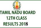 TN 12th Class Result 2018: Tamil Nadu HSC Class 12 result declared; 91.1% pass